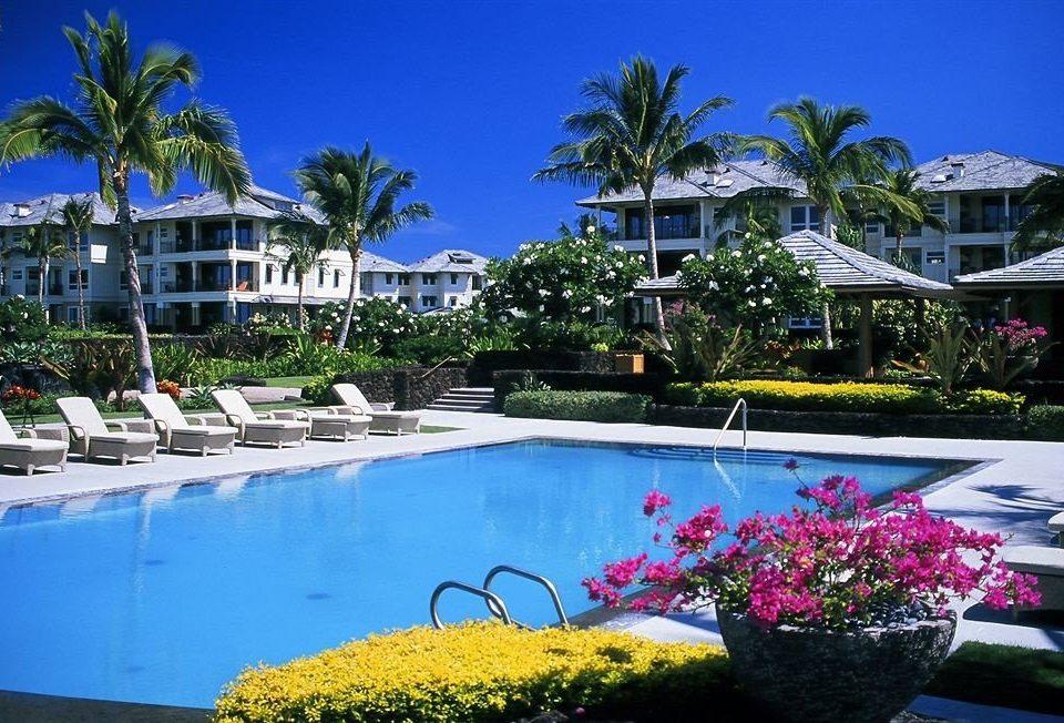 tree building swimming pool Resort property leisure colorful flower condominium marina plant Villa Pool Garden