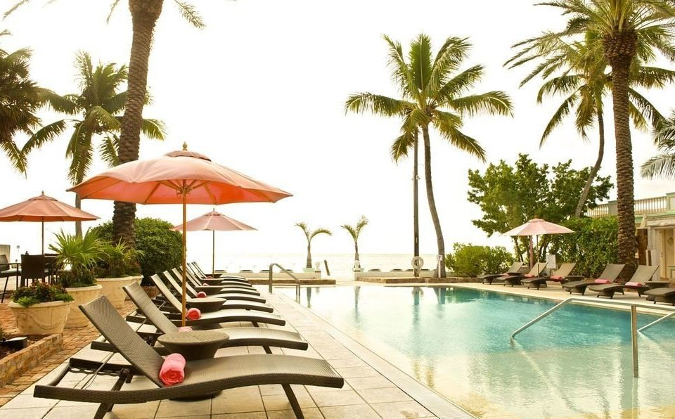 tree sky palm umbrella chair Resort leisure Pool swimming pool property caribbean Villa condominium resort town lined eco hotel lawn plant shade Garden