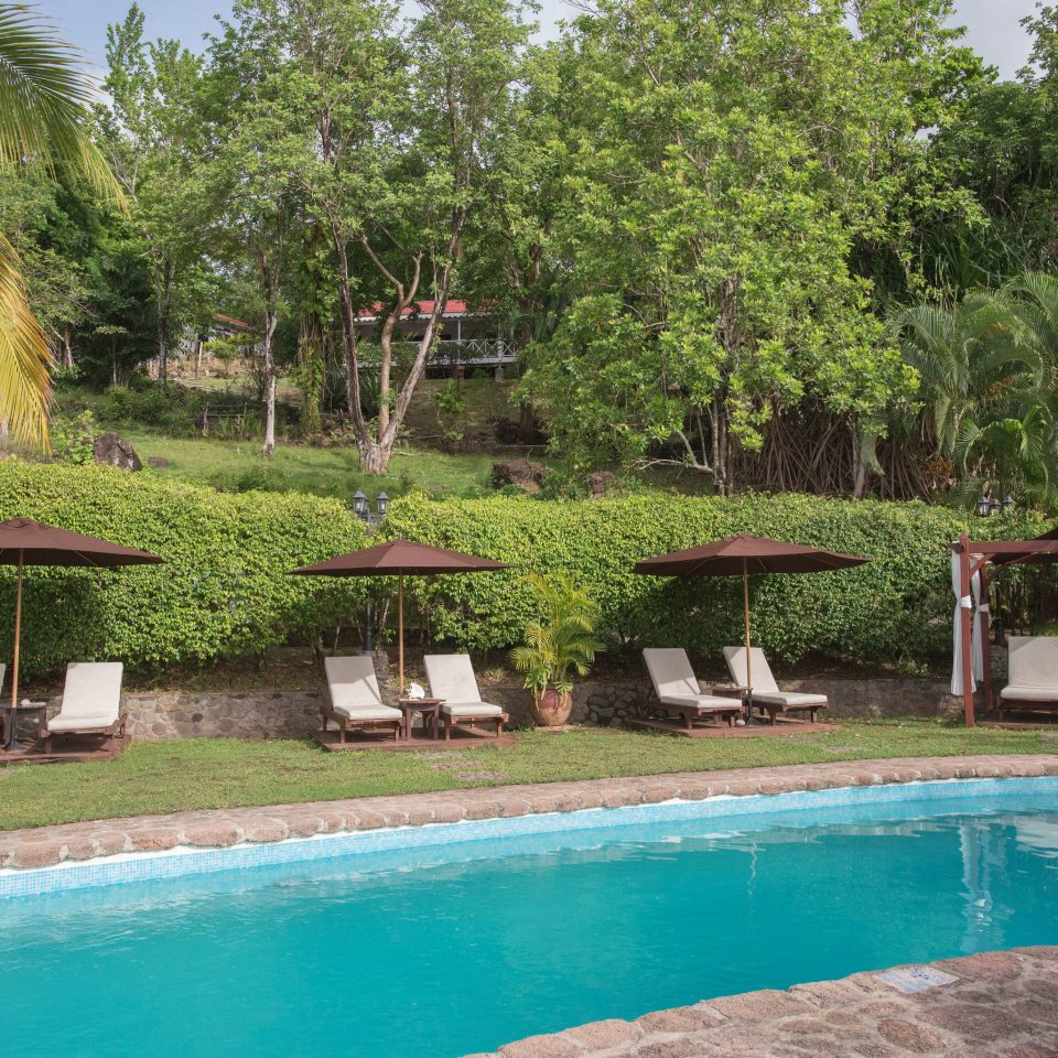 tree grass swimming pool property Pool Resort Villa backyard eco hotel Garden hacienda swimming