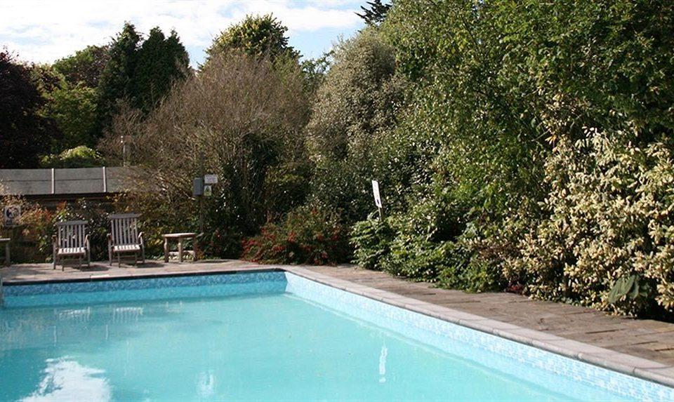 tree swimming pool property Pool backyard Villa Garden yard landscape architect swimming Resort