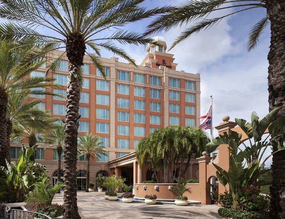tree property condominium neighbourhood palm house Resort residential area arecales home plant mansion plaza Garden
