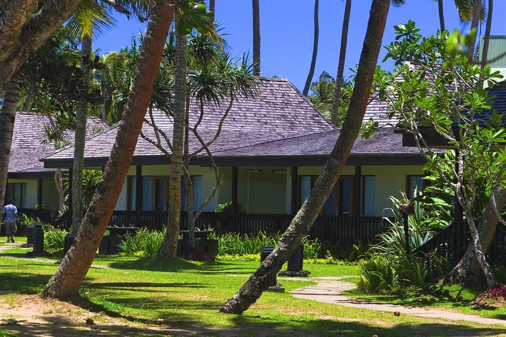 tree grass Resort house home plant arecales Garden tropics residential palm