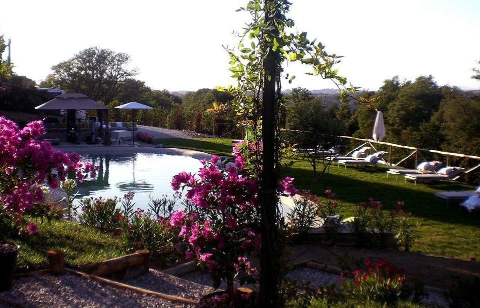 tree sky Garden flower backyard yard Resort landscape architect botanical garden bushes surrounded