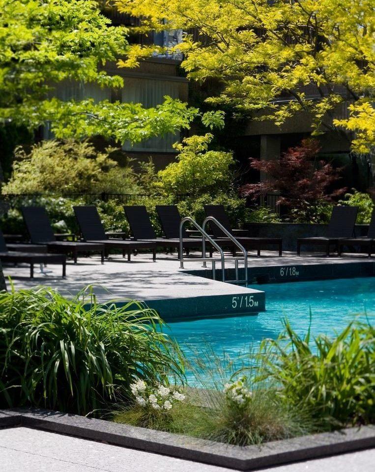 tree swimming pool botany sidewalk Garden reflecting pool backyard landscape landscape architect flower pond landscaping Resort