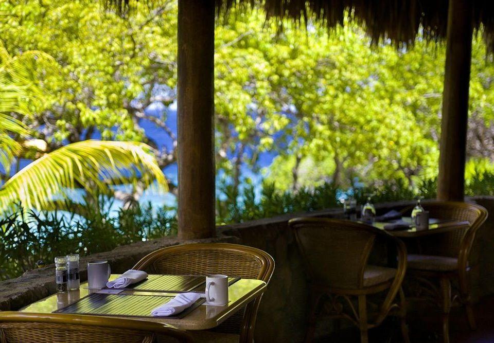 tree chair backyard flower Garden cottage Resort restaurant