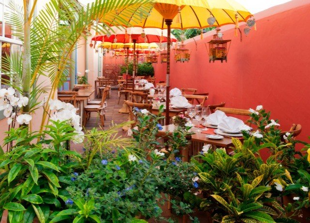 plant Resort floristry restaurant flower backyard hacienda Garden colorful