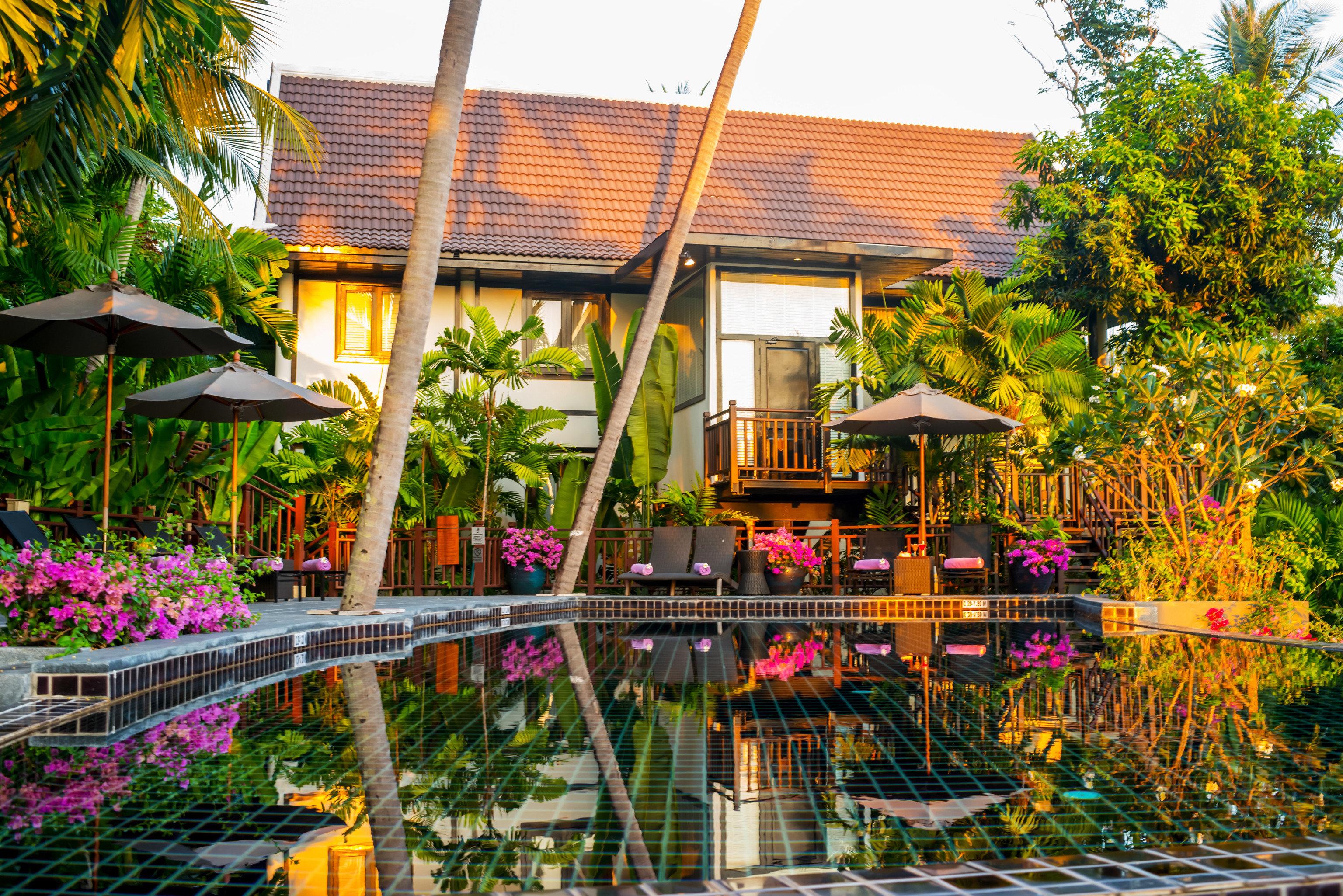 tree Resort house flower Garden backyard colorful