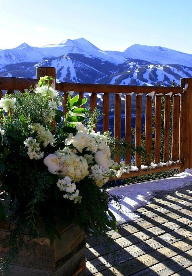 flower snow cottage backyard Resort outdoor structure Garden