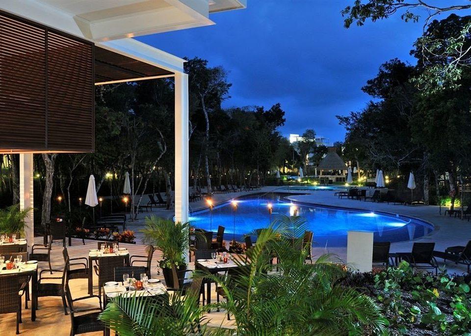 tree swimming pool Resort condominium plaza Garden day