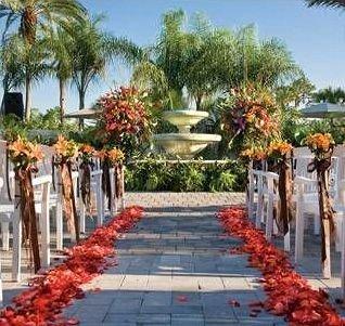 tree sky palm plaza walkway flower plant floristry Resort Garden lined