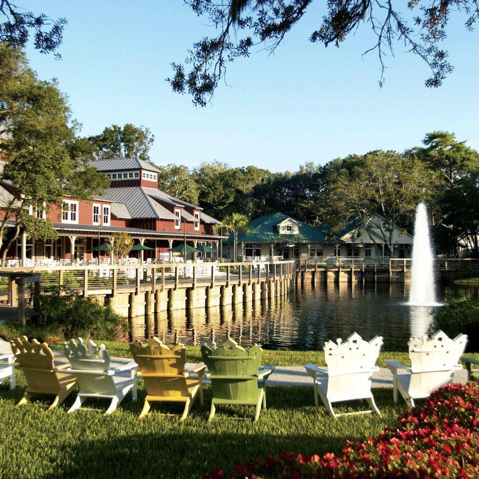 tree grass sky Garden park Resort flower palace