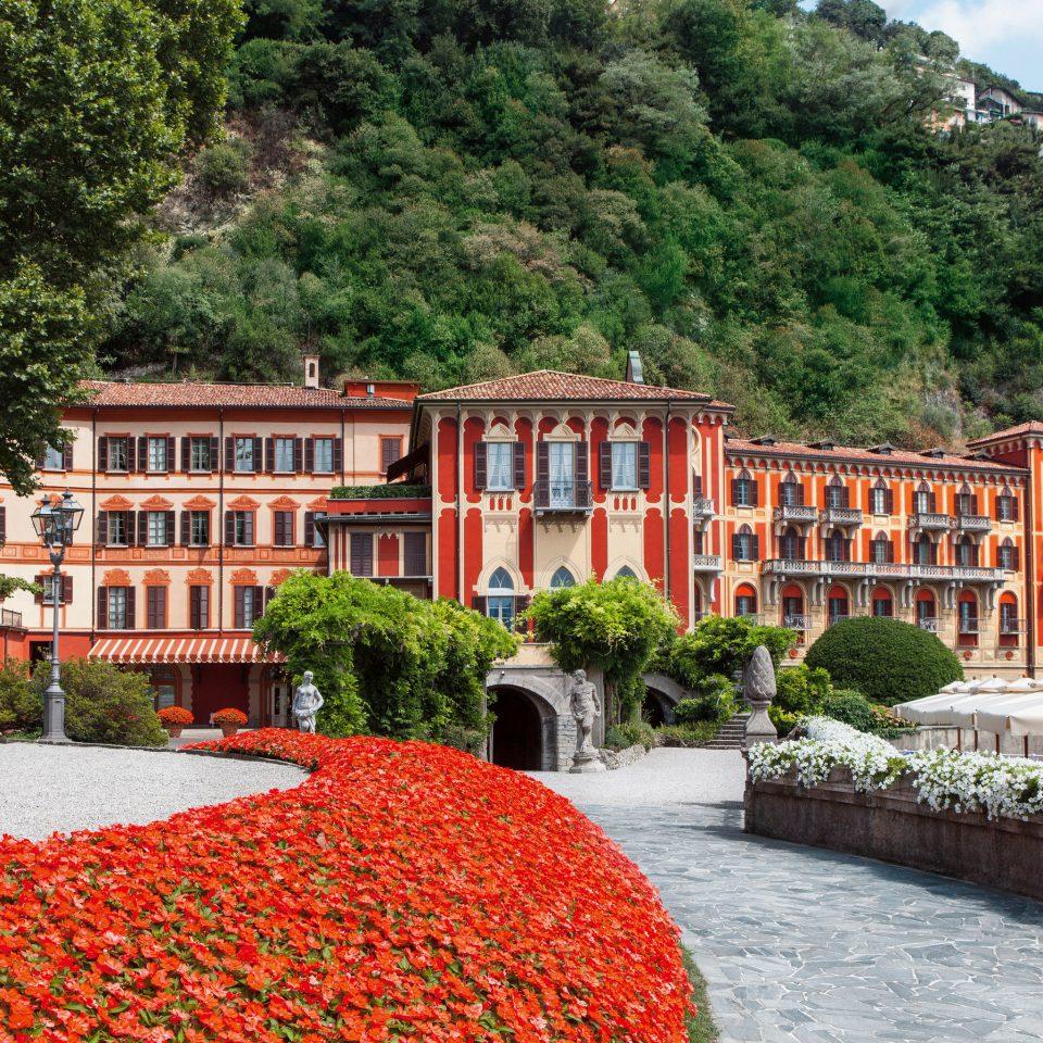 tree Town Resort orange Garden flower Village stone surrounded