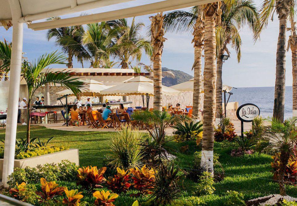 tree grass palm plant property Resort arecales home hacienda Garden restaurant palace Villa mansion flower bushes