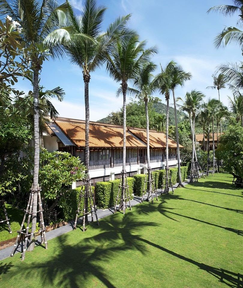 tree grass sky property Resort arecales walkway lawn palm family plant Garden Villa palm lush shade