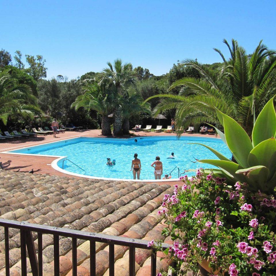 tree sky property swimming pool Resort plant Villa backyard palm Garden