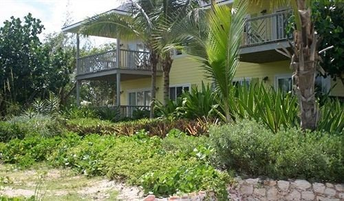 tree property plant palm Resort home yard cottage Villa Garden backyard lawn eco hotel walkway