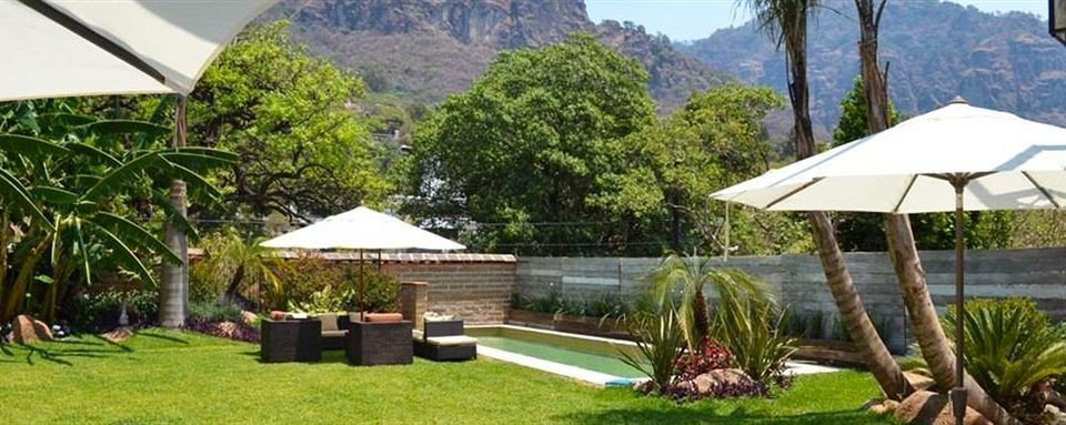 grass tree property Resort mountain cottage home eco hotel Villa Garden backyard house lush