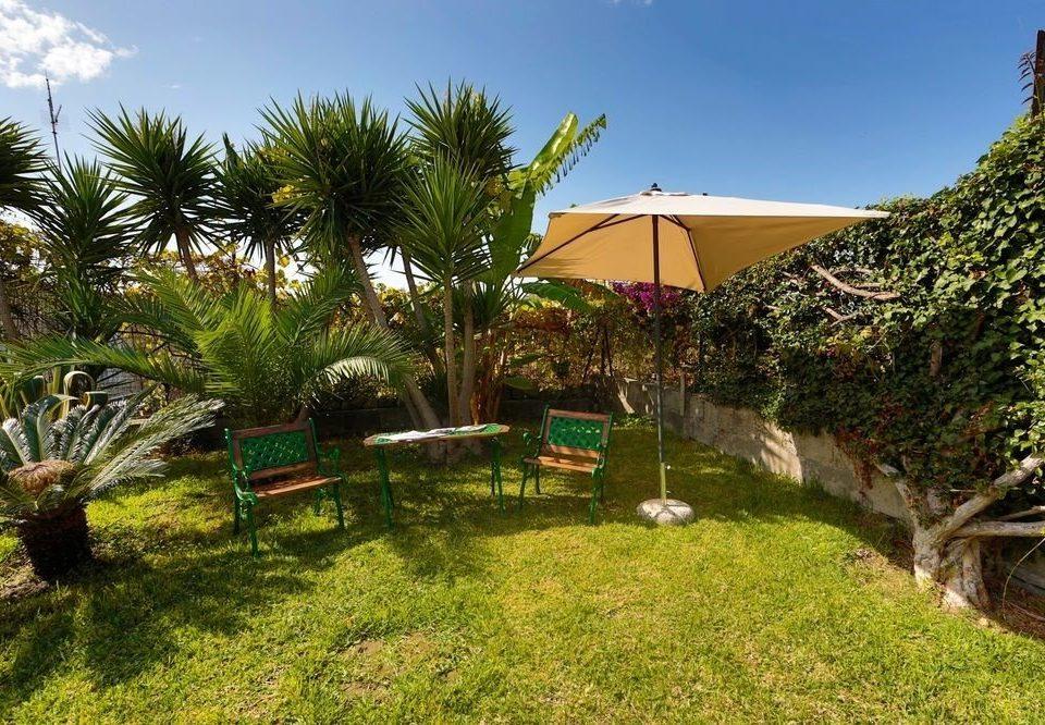 grass tree sky plant property ecosystem Resort palm Villa Garden eco hotel cottage backyard hacienda lawn lush
