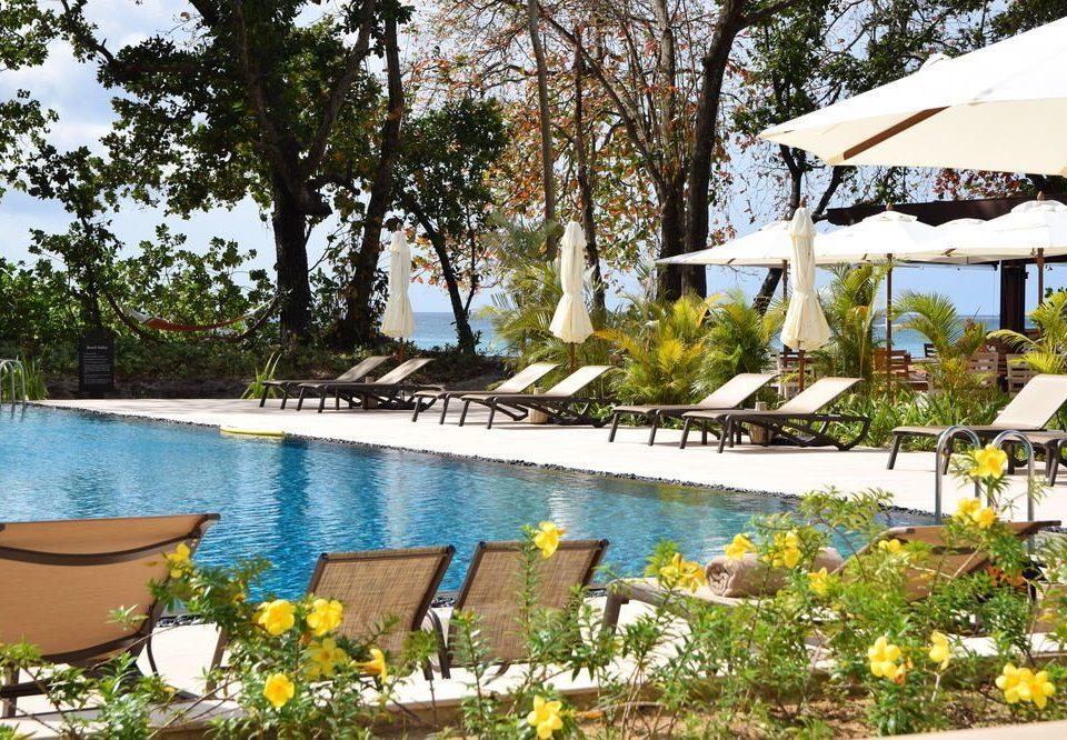 tree leisure swimming pool Resort backyard Villa Garden