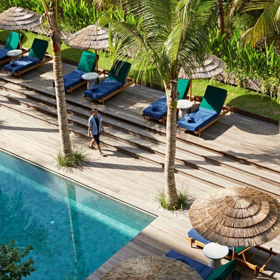 tree ground leisure swimming pool backyard Resort yard Garden Villa walkway