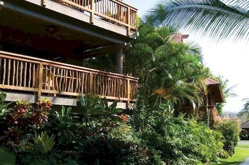 tree property building Resort condominium home Villa plant eco hotel palm mansion cottage porch Garden bushes