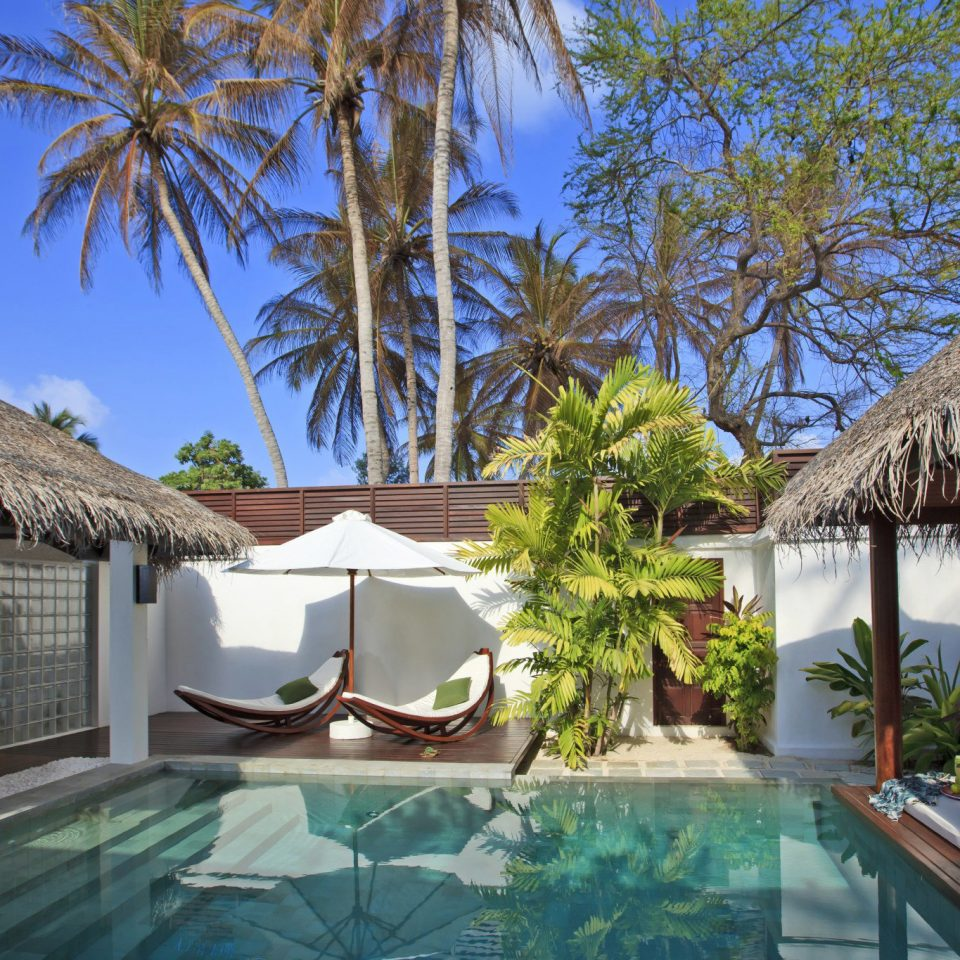 tree property Resort building swimming pool Villa caribbean home palm mansion cottage eco hotel condominium roof Garden