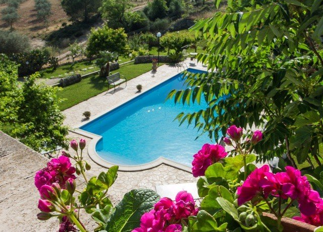 flower plant Resort swimming pool Villa Garden colorful
