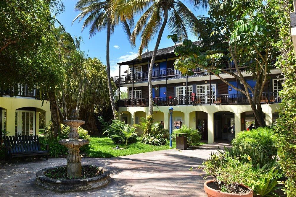 tree plant property Resort palm condominium home Villa Garden eco hotel mansion Village hacienda bushes
