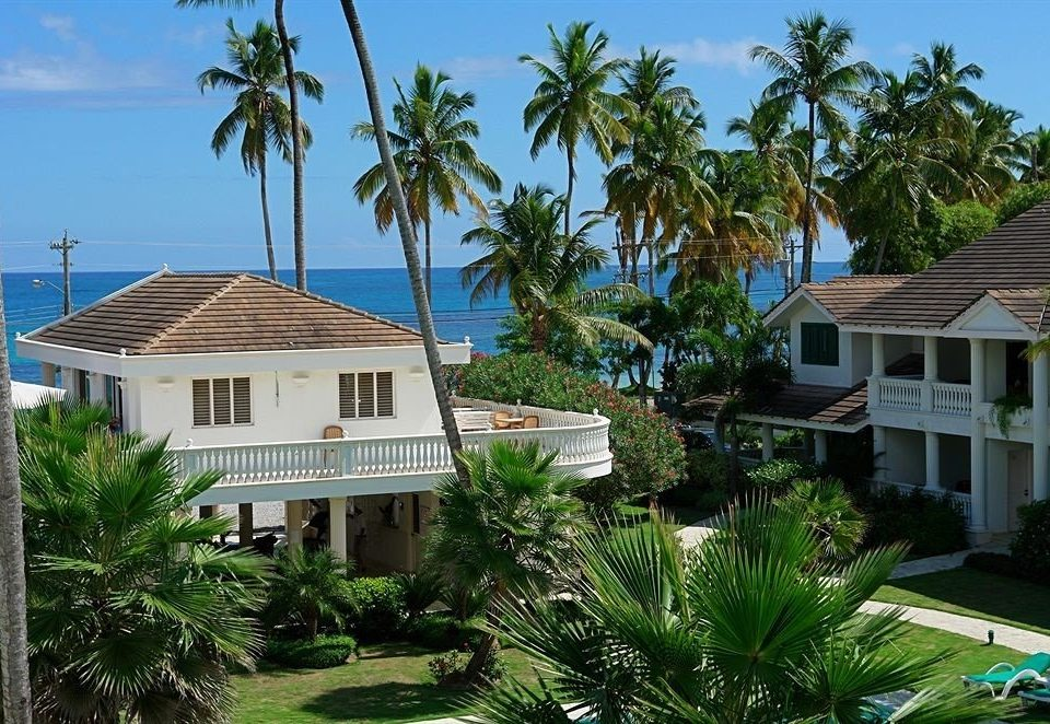 tree sky building palm house property Resort condominium plant home Garden arecales residential area caribbean Villa cottage Village mansion lined