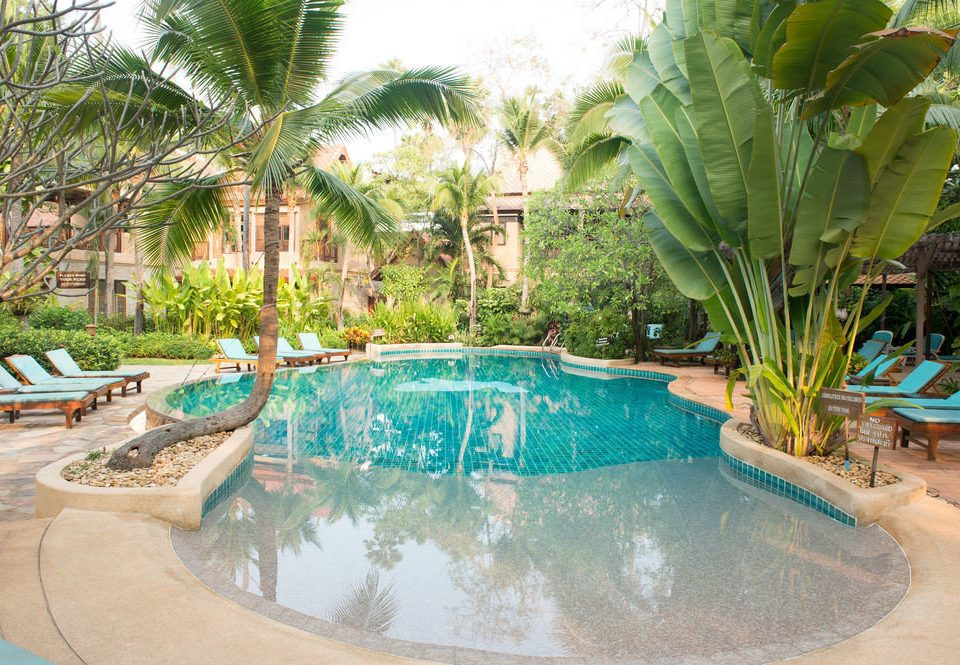 tree swimming pool property plant Resort backyard Villa Water park hacienda palm Garden