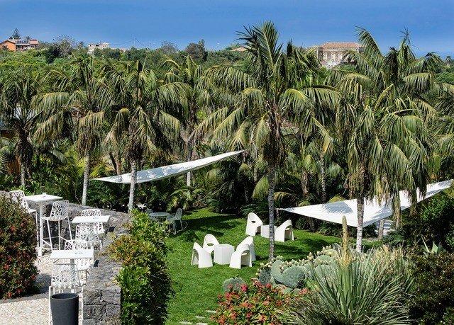 tree sky grass flora botany Resort arecales Garden plant palm Village botanical garden surrounded