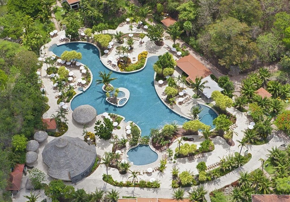 tree Resort mansion aerial photography residential area amusement park Garden park bird's eye view Water park plant