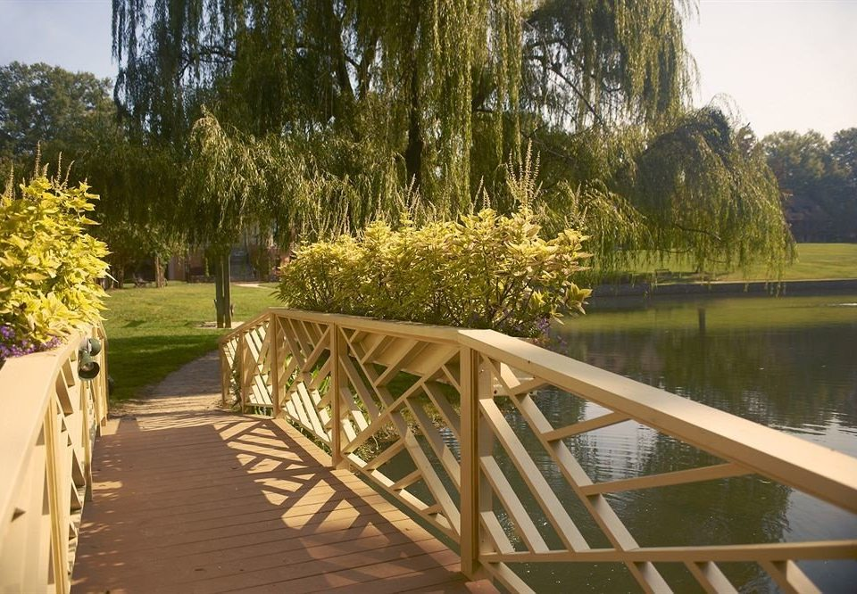 tree water flower walkway willow backyard Garden Villa day