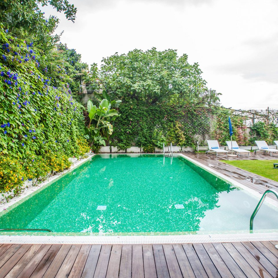 tree swimming pool property backyard grass reflecting pool Villa Garden landscape architect lawn walkway