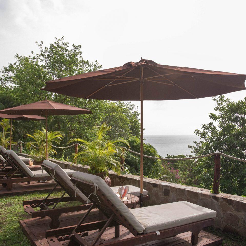 tree sky gazebo outdoor structure wooden pavilion umbrella set shade