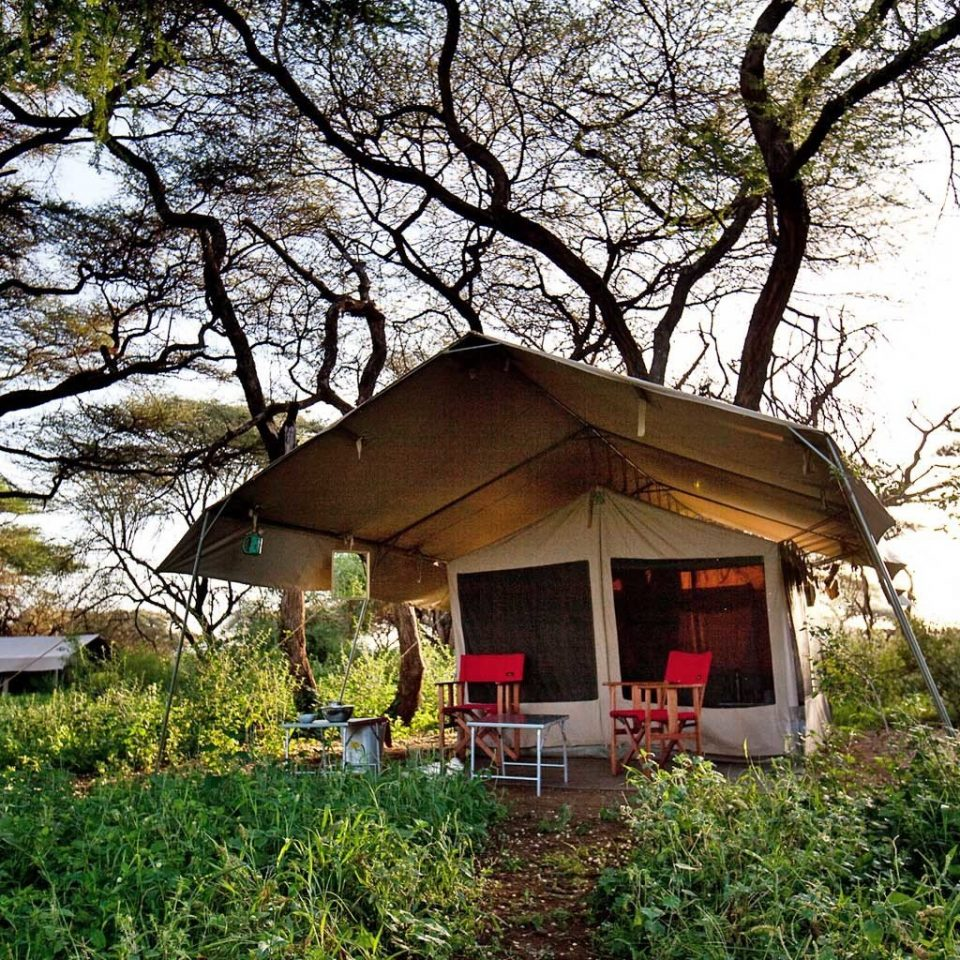 Glamping Safari tree grass house building home cottage rural area flower hut plant shack Village shrine