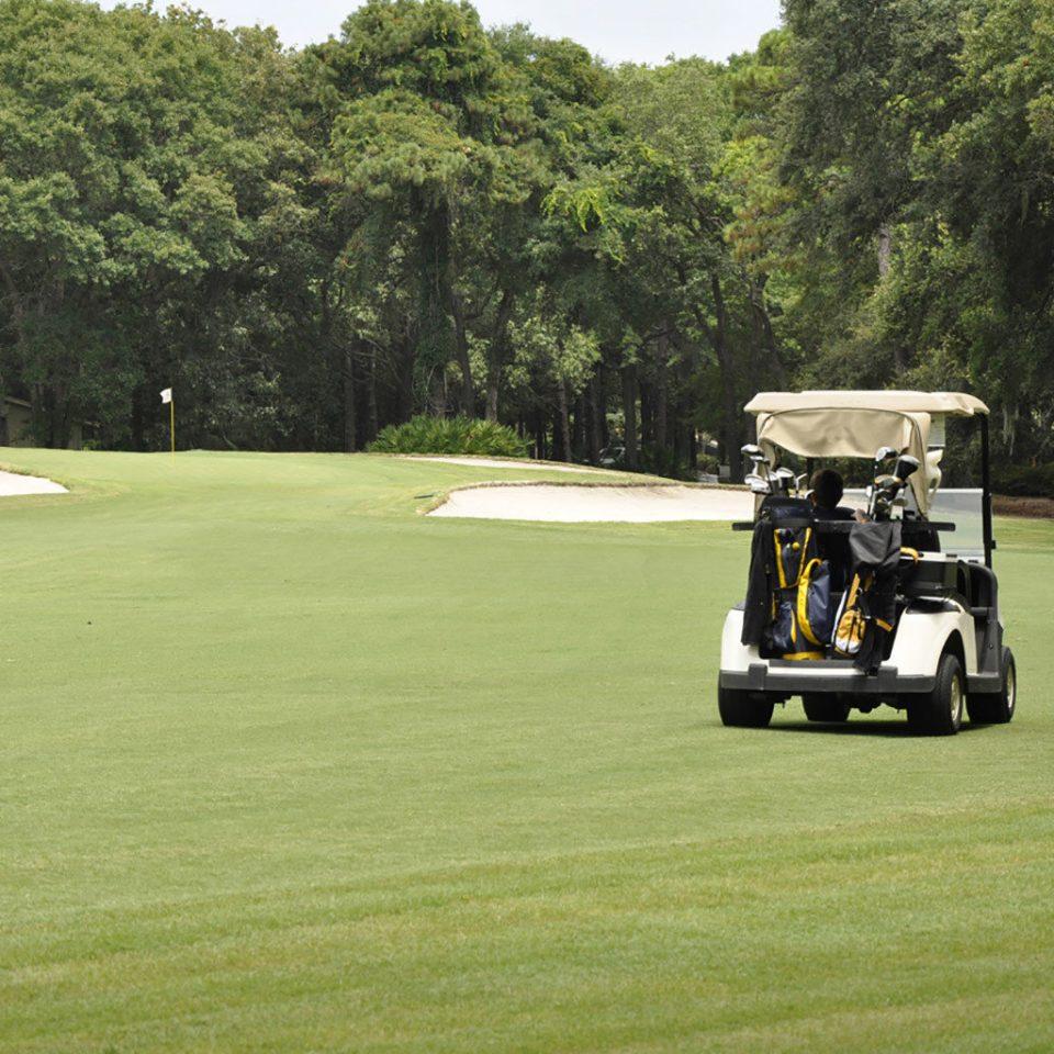tree grass structure Golf green sports transport ball game lawn sport venue golf club golf course outdoor recreation recreation golfcart field vehicle