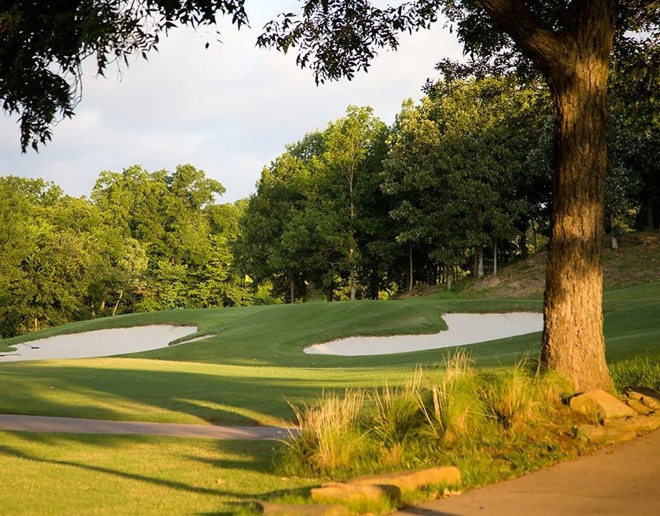 tree grass structure sport venue botany golf course sports outdoor recreation plant golf club recreation lawn park Golf surrounded lush