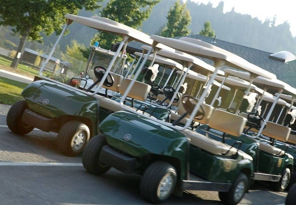 tree road sky car vehicle Golf cart land vehicle mode of transport military vehicle transport recreational vehicle vintage car antique car golfcart