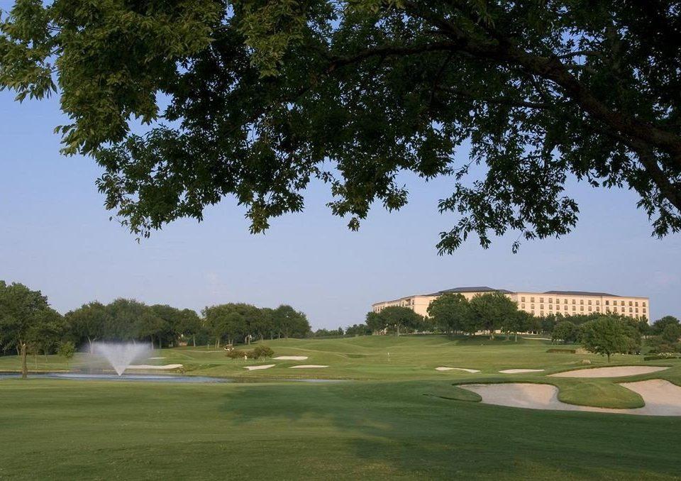 tree sky grass structure sport venue sports golf course golf club outdoor recreation Golf plant recreation