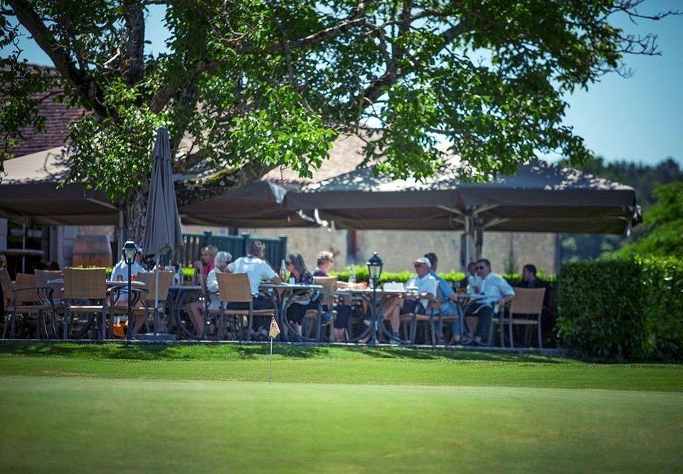 tree grass structure leisure sports sport venue outdoor recreation park Golf recreation lawn golf club plant