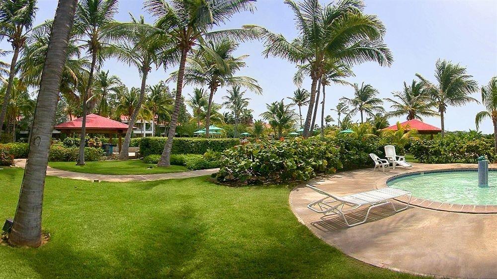 Grounds Hot tub Hot tub/Jacuzzi Resort tree grass sky palm property swimming pool arecales plant lawn Villa Golf Pool hacienda backyard surrounded