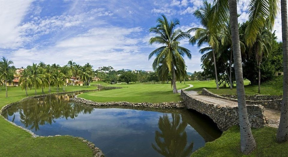 grass tree water structure palm sport venue Lake plant golf course golf club Golf pond recreation sports lush