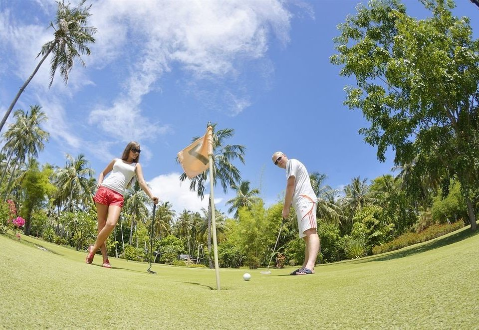 tree sky grass Golf athletic game Sport leisure sports outdoor recreation recreation