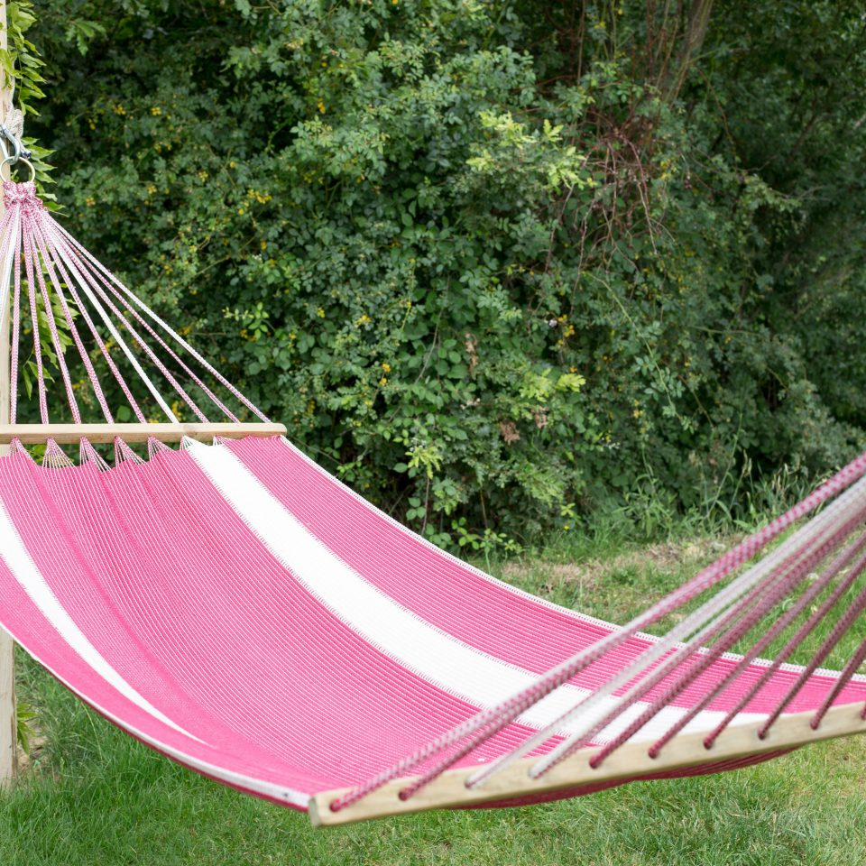 tree grass hammock leisure park phasianid seat lush