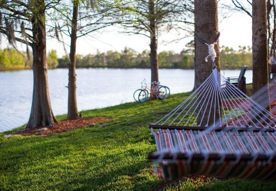 grass tree park leisure