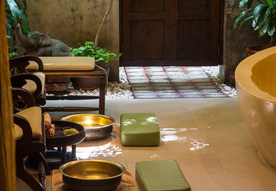 green plant living room home restaurant