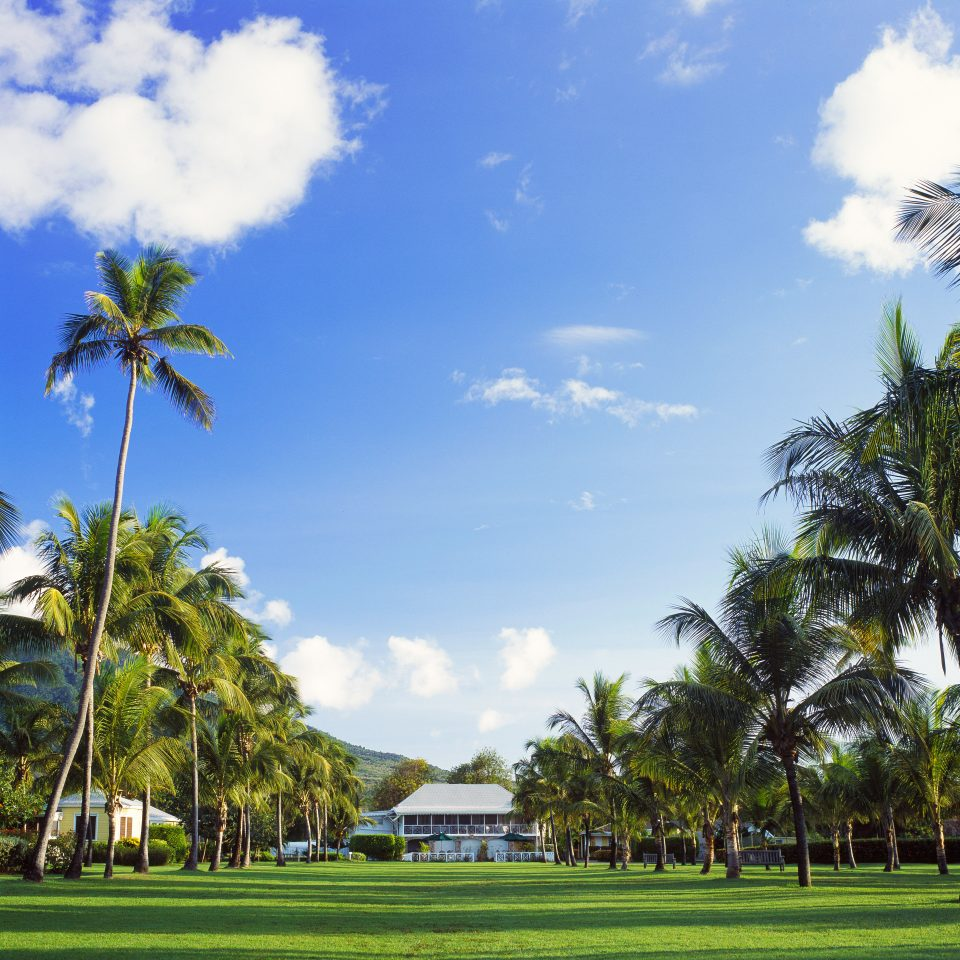 Grounds Luxury Mountains Scenic views Tropical tree sky grass structure plant palm family sport venue arecales field woody plant lawn rural area golf course tropics Resort flower park palm sunny day lush