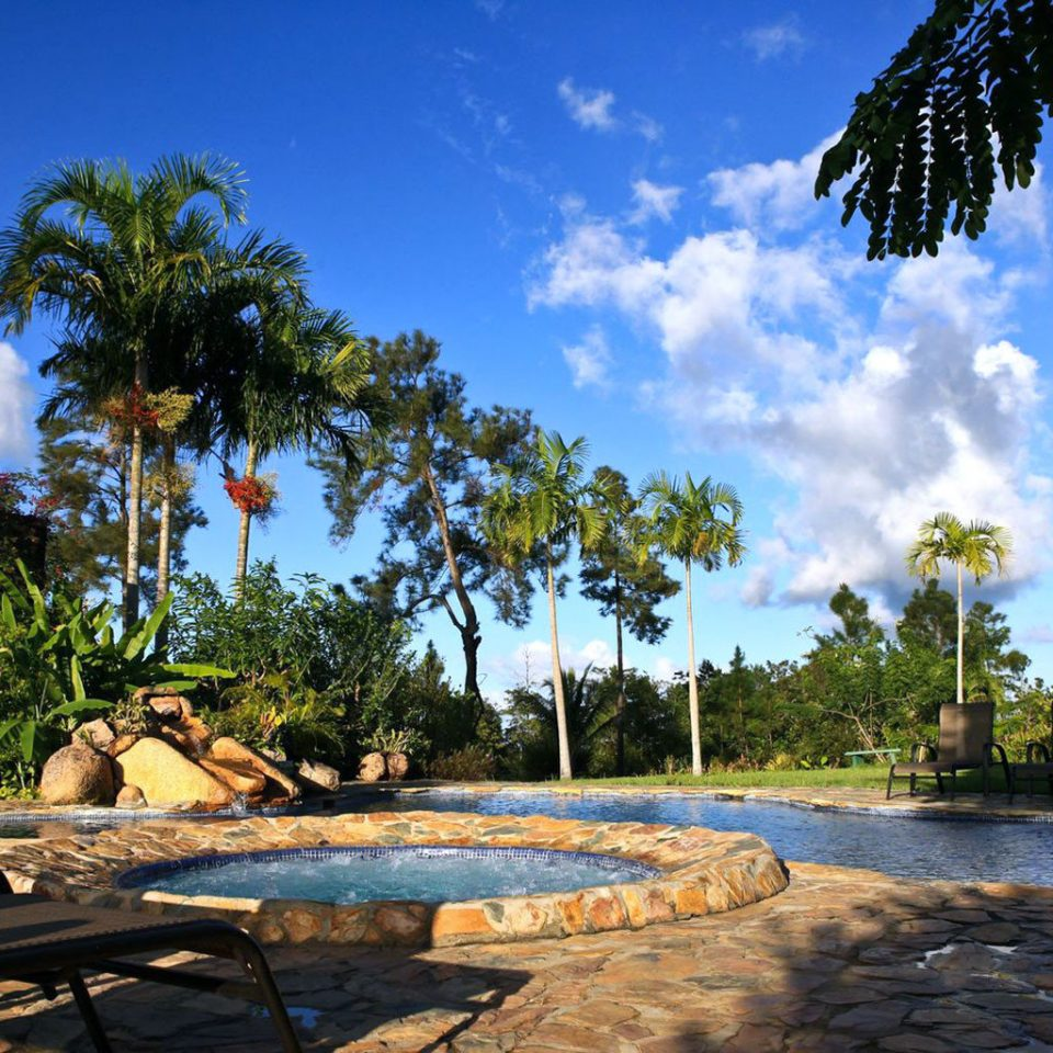 Grounds Outdoor Activities Outdoors Play Pool tree sky swimming pool arecales Resort plant tropics Sea
