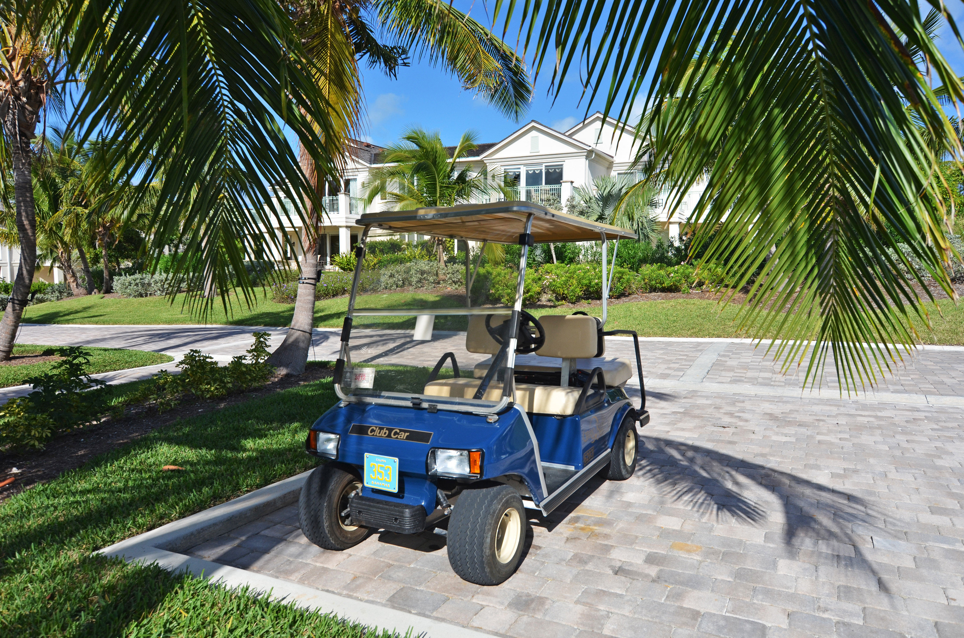 Grounds Resort tree palm vehicle blue arecales golfcart